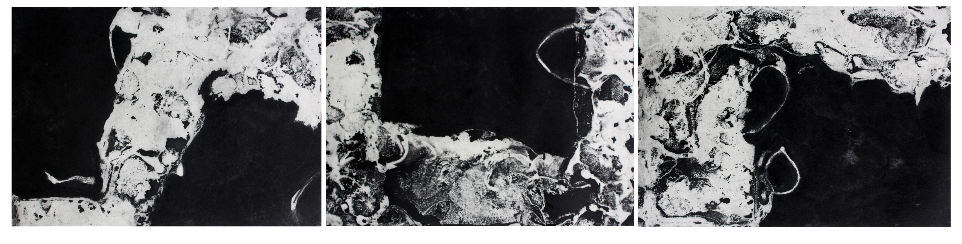 Black Light triptych